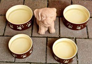 dog-dishes