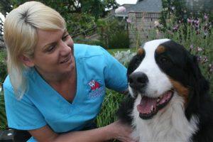 happy-groomed-dog