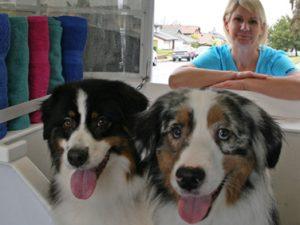 mobile-dog-groomer-rancho-santa-fe-2
